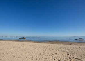Prestigious-Cap-Ferret-Regina-Beach-View-1