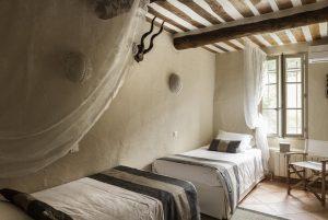 Foret de Provence