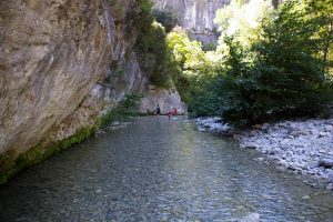 Tour Saracene